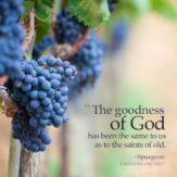 The Goodness of God!